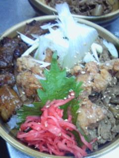 三種の肉丼1.jpg